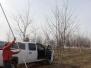 Tree Tagging Penn Presbyterian 38t Street Garden