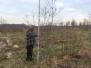 Tree Tagging Philadelphia Zoo